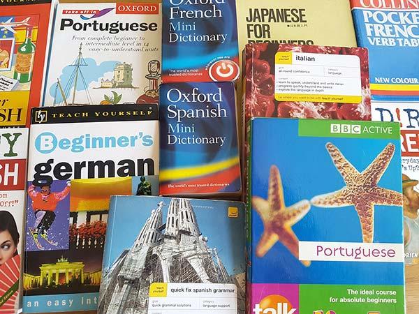 Foreign Language Translation Books