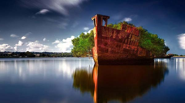 Wreck of the SS Ayrfield