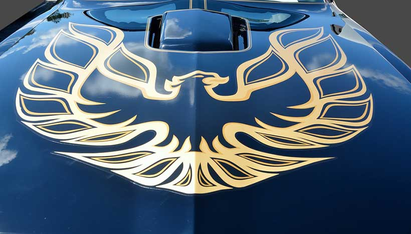 Firebird Car Decal