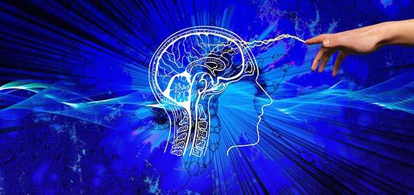 7 Brain Hacks to Improve Memory