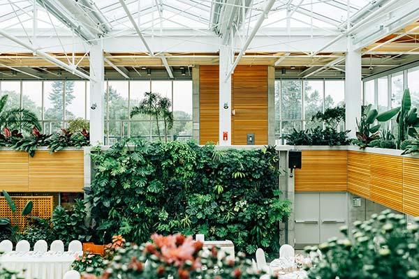 Interior Living Walls