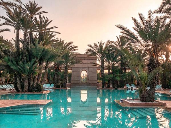 Exotic Swimming Pool
